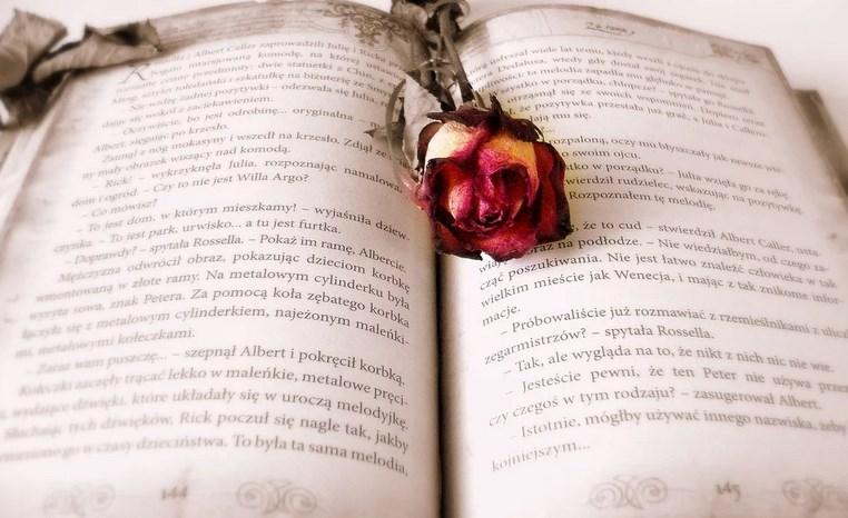 Les beaux romans d'amour de tous les temps