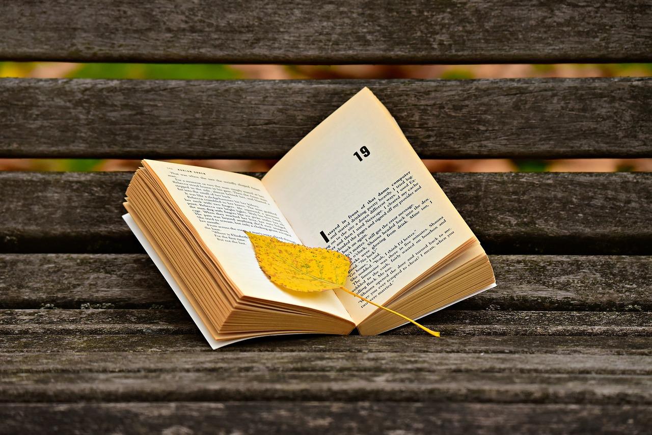 lire un roman connu