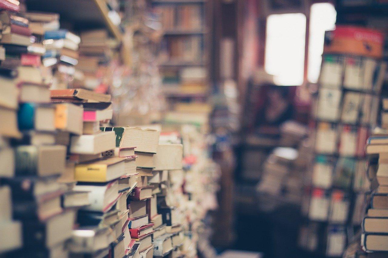 en apprendre plus l'histoire de la littérature française du XXème siècle